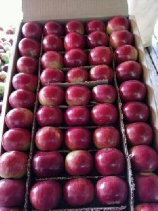Fresh Organic Shimla Apple