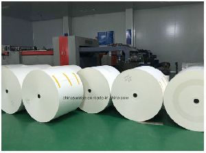 Cup Stock Paper Rolls