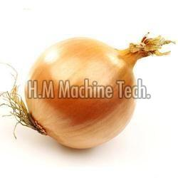 Natural Yellow Onion