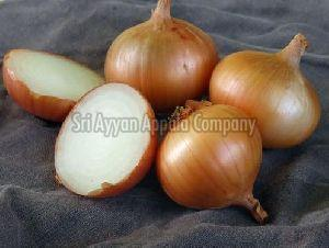 Fresh Sweet Onion