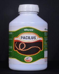 Pacilus Bio Insecticide