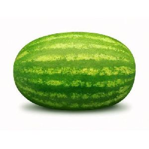 Green Watermelon