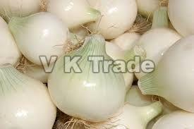 Export Quality White Onion