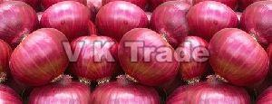 Indian Fresh Red Onion