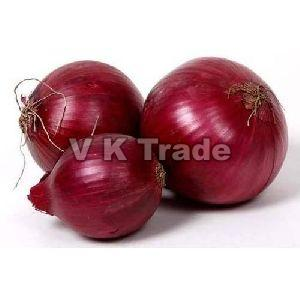 Organic Indian Red Onion