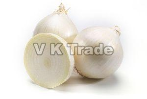 Sweet White Onion