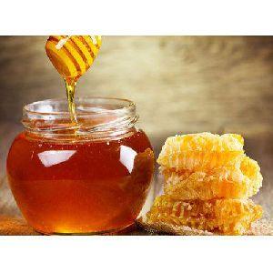 Honey Manufacturer Exporter Supplier Chennai India