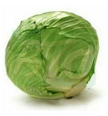 Fresh Natrual Cabbage