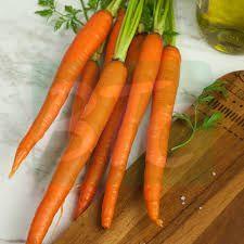 Fresh Natural Carrot