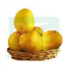 Natural Alphonso Mango