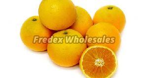 Organic Valencia Oranges