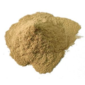 Kapur Kachri Powder