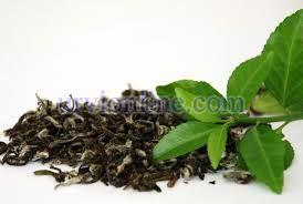 Natural Tea Leaves