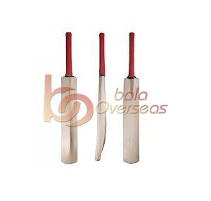 Dynamic Power Cricket Bat