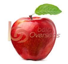 Fresh High Quality Apple