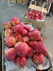 Himachali Apples