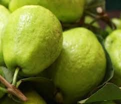 Fresh Natural Guava