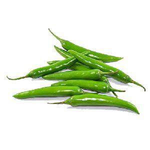 Long Green Fresh Chilli