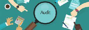 Company Audit Services
