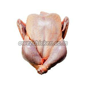 Country Chicken Meat