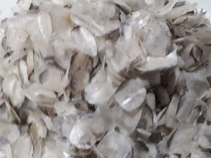 Dried Fish Scales