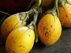 Skinned Betel Nuts