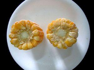 Frozen Cob Corn