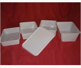 Plastic Rectangular Container