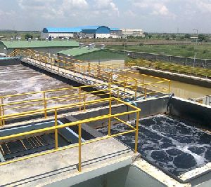 Chemical and Petrochemical Effluents