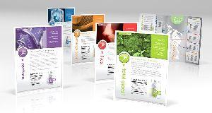 Flyer and Brochure Design Service