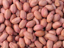 Ground Nut Kernels