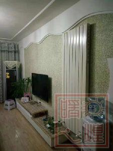 Vertical Wall Mounted Infrared Electric Heater