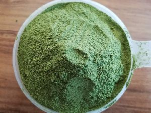 Moringa Powder Extract