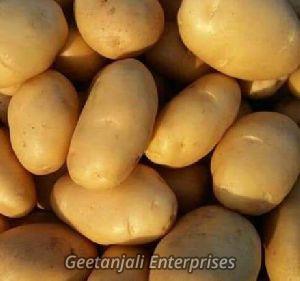 Fresh Yellow Potato