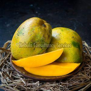 Fresh Benishan Mango