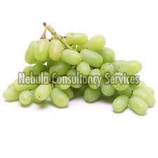 Fresh Organic Grapes