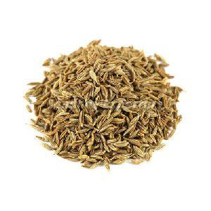 Natural Cumin Seeds