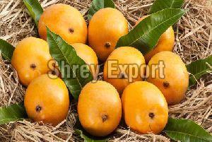 Fresh Hafus Mango