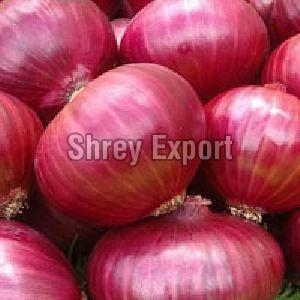 Fresh Natural Red Onion