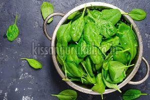 Organic Spinach Leaves