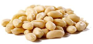 Groundnut Seed