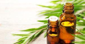 Organic Tea Tree Oil