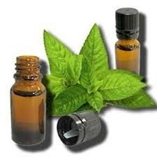 Pure Mentha Piperita Oil
