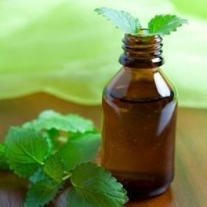 Pure Mentha Spearmint Oil