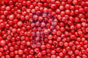 Pink Pepper Seeds