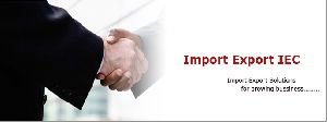 Import Export Code Consultancy Services