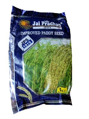 JPS 1919 Improved Paddy Seeds