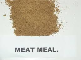 Meat Meal