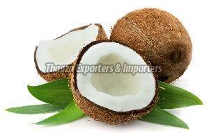 Fresh Husked Mature Coconut