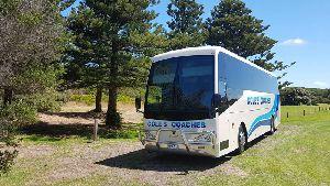 AC Coach Bus Seat Belt